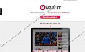 Buzz-It ads