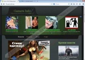 Gamersinfo.org