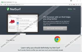 NetSurf Ads