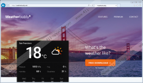 Weatherbuddy Ads