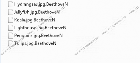 BeethoveN Ransomware